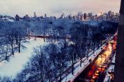 Central Park Photos - Winter Strikes by Ariane Moshayedi