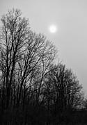 Off The Beaten Path Photography - Andrew Alexander - Winter Sun