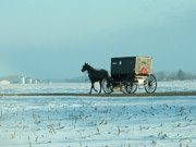 Horse And Buggy Posters - Winter Sun on Amish Buggy Poster by David Arment