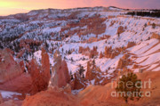 Winter Landscapes Framed Prints - Winter Sunrise in Bryce Canyon Framed Print by Sandra Bronstein