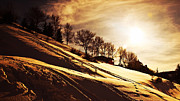 Snowy Evening Posters - Winter sunset Poster by Anna Omelchenko