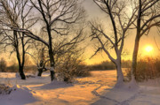 White River Scene Prints - Winter Sunset Print by Jaroslaw Grudzinski