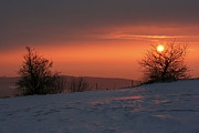 Contemplative Metal Prints - Winter Sunset Metal Print by Michal Boubin