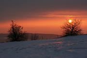 Winter Sunset Print by Michal Boubin