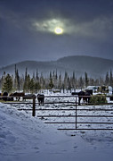 Granby Framed Prints - Winter Sunset on the Ranch Framed Print by Ellen Lacey