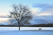 Lake Massabesic Photos - Winter by Toshihide Takekoshi
