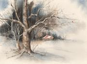 Cardinal Paintings - Winter Tree by Sam Sidders