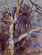 Tom Christopher - Winter Tree Study