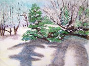 Ground Pastels - Winter Trees by Katina Cote