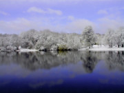 New England Winter Metal Prints - Winter View Metal Print by Karol  Livote