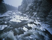 River Scenes Photos - Winter View Of The Ausable River by Michael Melford