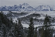 River Views Posters - Winter View Of The Snake River, Grand Poster by Raymond Gehman