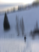 Styria Photos - Winter Walk by Karin Ubeleis-Jones