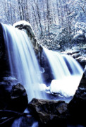 Trout Prints - Winter Waterfall Print by Thomas R Fletcher