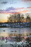 Clouds Photographs Posters - Winter Wetlands Poster by Rob Travis