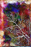 Winter Wishes Print by Judi Bagwell
