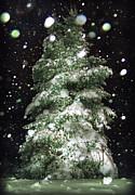 Winter Wonderful Print by Lj Lambert