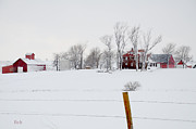 Winter Landscape Photos - Winter Wonderland at the Farm by Christine Belt