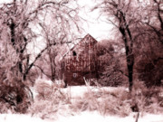 Shed Metal Prints - Winter wonderland Pink Metal Print by Julie Hamilton