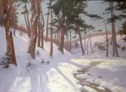 Woods; Shadows; Trees Paintings - Winter woodland with a stream by James MacLaren