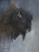 Canadian Wildlife Posters - Winters Breath-Woods Bison Poster by Patricia Mansell