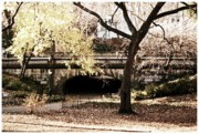 Central Park Mixed Media Acrylic Prints - Winters day in the city-vintage effects Acrylic Print by Suzie Schaefer