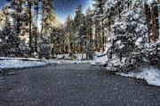 Saija  Lehtonen - Winter