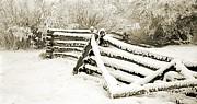 Snow Scenes Mixed Media Metal Prints - Winters Fence Metal Print by Roland Stanke