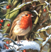 Greetings Card Paintings - Winters Friend by David Price