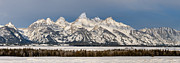 Grand Tetons Prints - Winters Majesty Print by Sandra Bronstein