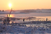 Omaha Ne Photos - Winters Morning by Elizabeth Winter