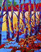 Birch Tree Paintings - Winters Promise by Marion Rose