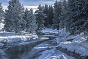 Geysers Photos - Winters Splendor by Sandra Bronstein