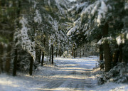 Snowy Roads Photo Posters - Winters Tranquility Poster by Debra Straub