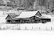 Old Barn Photo Prints - Winters White Shroud Print by Tom Mc Nemar