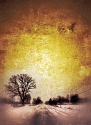 Snowy Road Metal Prints - Wintery Road Sunrise Metal Print by Jill Battaglia