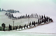 Chianti Framed Prints - winthertime Orcia valley Framed Print by Franco Franceschi