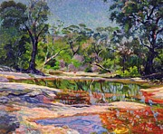 Lush Green Painting Posters - Wirreanda Creek - New South Wales - Australia Poster by Robert Tyndall