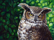 Forest Dweller Posters - Wisdom Great Horned Owl Poster by Darlene Watters