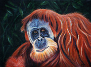 Orangutan Painting Acrylic Prints - Wise One - Orangutan Paintings Acrylic Print by Michelle Wrighton