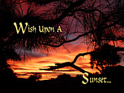 Wishbones Framed Prints - Wish Upon A Sunset Framed Print by Cindy Wright