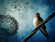 Photo Manipulation Metal Prints - Wishing Swallow Metal Print by Nancy  Coelho
