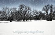 Saija  Lehtonen - Wishing you a very Merry Christmas