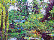 Giverny Prints - Wisteria Bridge Giverny Print by David Lloyd Glover