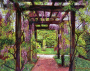 Trellis Paintings - Wisteria Trellis by David Lloyd Glover