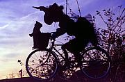 Flying Witch Prints - Witch Biking and Flying 2 Print by Steve Ohlsen