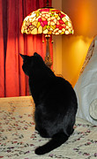 Witch Halloween Cat  Wicca Metal Prints - Witches Cat Metal Print by Michelle Milano