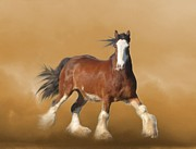 Trotting Paintings - ...With...Fury He Devoureth the Ground by Angela Marks
