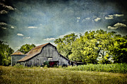 Tennessee Farm Digital Art Prints - Withstanding Time Print by Elizabeth Wilson
