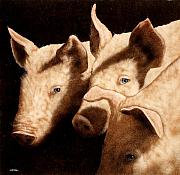 Law Art - Witness for the defense...Wolf vs. Pigs by Will Bullas
